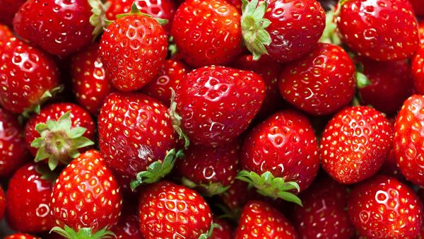 The science of strawberries